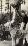 Kennelpiirin nuorisoleiriltä 1977.